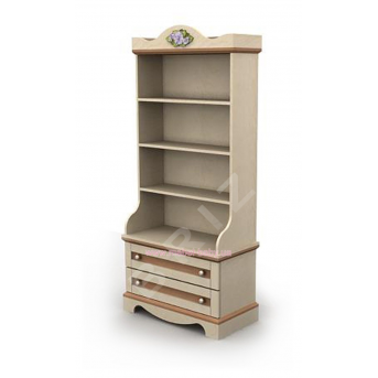 Книжный шкаф An-04